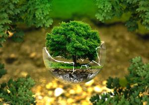 محیط زیست ۱